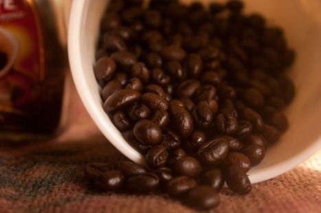 Russia: Coffee (Decaffeinated And Roasted) - Marke- Market Reports on Russia | Market Reports on Russia | Scoop.it