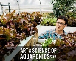 Art & Science of Aquaponics | Evofarm | Aquaponics World View | Scoop.it