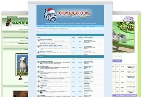 Créer un forum sur les animaux sur Forumactif.com | Forumactif | Scoop.it