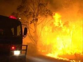 Prime Minister Tony Abbott joins Davidson Rural Fire Brigade to fight NSW bushfires | Bushfires | Scoop.it