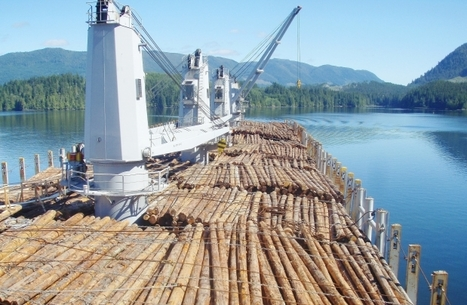 Chinese sovereign wealth fund eyes Vancouver Island timberlands investment | Chinese Cyber Code Conflict | Scoop.it