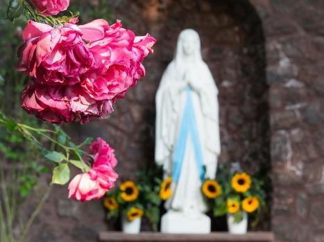 Katolícka cirkev slávi prikázaný sviatok Nepoškvrneného počatia Panny Márie | Správy Výveska | Scoop.it
