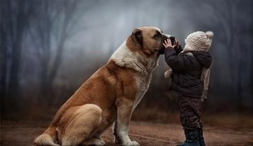 Une mère prend des photographies magiques de ses deux enfants dans leur ferme | The Blog's Revue by OlivierSC | Scoop.it