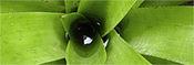 Bioconstrucción, construcción ecológica, casas ecológicas, vivienda bioclimática, casas de madera | Javier Rodriguez | Scoop.it
