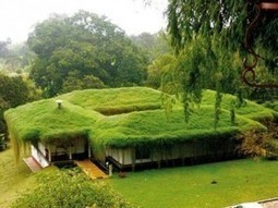 Green roofs - vision for the future | Innovative & Sustainable Building | Scoop.it