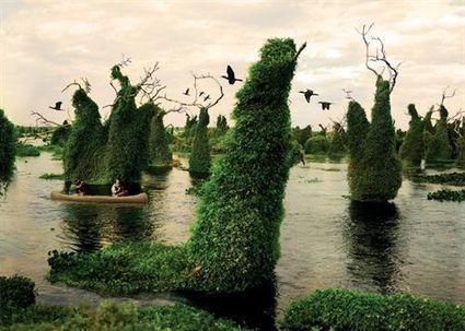Argentina celebrará el 'Día Nacional del Ecoturismo', con diversas propuestas para los turistas | Actualidad | Scoop.it