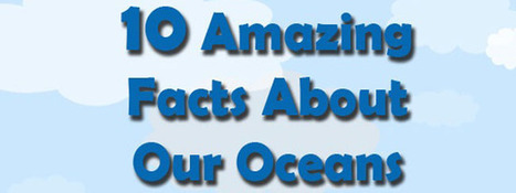 10 Amazing Facts About Our Oceans - DIVE.in | All about water, the oceans, environmental issues | Scoop.it