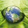 Environnement (Technologie et science)