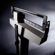 Obesidad: MedlinePlus en español   BIOLOGIA HUMANA   Scoop.it