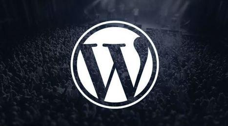 20 Plugins WordPress pour améliorer les performances de votre blog | Chiffres et infographies | Scoop.it