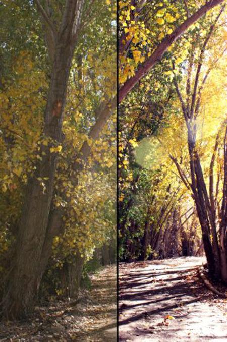 40 Useful gimp tutorials for Photos EnhancementSeize Design | Mac in der Schule | Scoop.it
