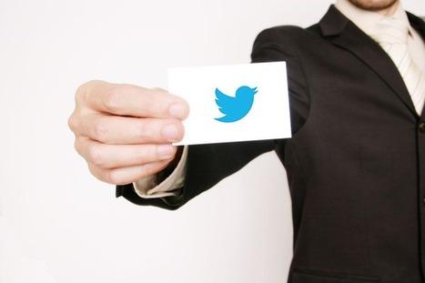 L'engouement Twitter chez les professionnels : Un réseau social porteur et sensible. | CommunityManagementActus | Scoop.it