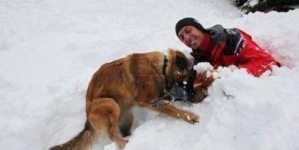 Béarn : comment les chiens apprennent à sauver des vies   maître chien   Scoop.it