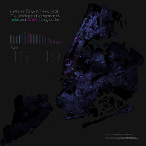 This map of gender segregation shows how New Yorkers live and die | AP Human Geography | Scoop.it
