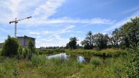 Rennes, capitale de la biodiversité - France 3 Bretagne | Le Fil @gricole | Scoop.it