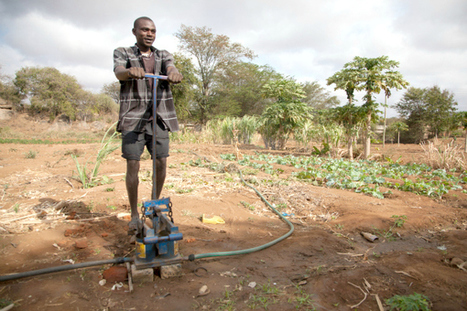 Solar pumps could boost farm yields in poor countries | solar | Scoop.it