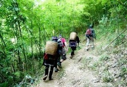 Sapa Trekking Tour 3 Days 4 Nights | Sapa Tours with Asia Charm Tours | Scoop.it