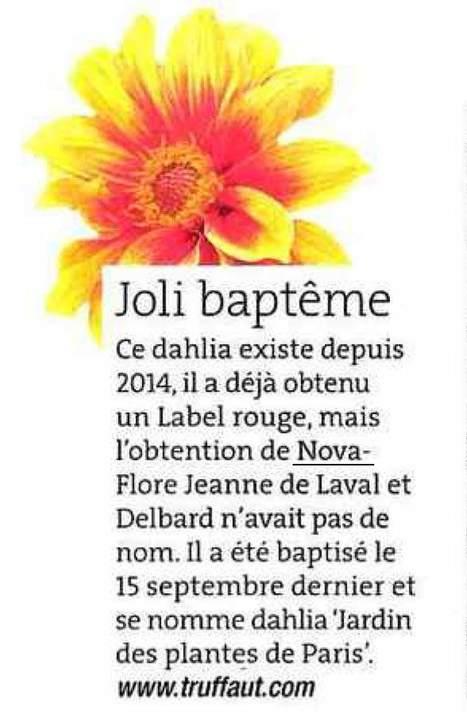 Joli Baptème - Rustica - 30 septembre 2016 | Revue de presse Nova-Flore | Scoop.it