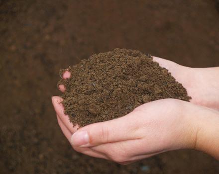 Du compost en ville, facile   Un Blog pour changer le Monde   Compostage collectif   Scoop.it