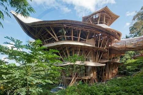 Meet the woman building stunning sustainable homes from bamboo - Treehugger | Permaculture, Homesteading & Green Technology | Scoop.it