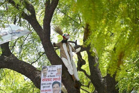 Inde: un paysan se pend lors d'une manifestation à New Delhi | Questions de développement ... | Scoop.it
