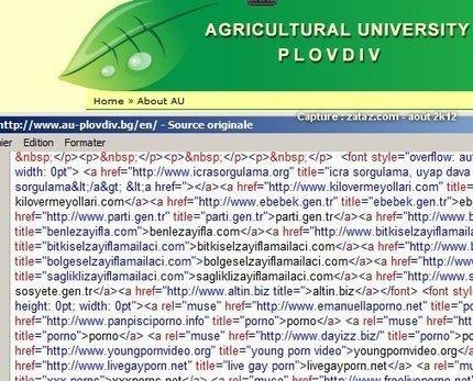 Infiltration de sites Internet par un publicitaire Turc   Communication Romande   Scoop.it