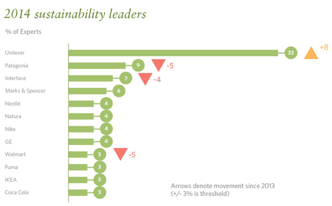 The expert view: top corporate sustainability leaders of 2014 | CRM et Social Responsibility | Scoop.it