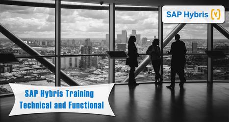 SAP Hybris Online Training by Experts | Microsoft Dynamics | SAP | Oracle | ERP online training | Scoop.it