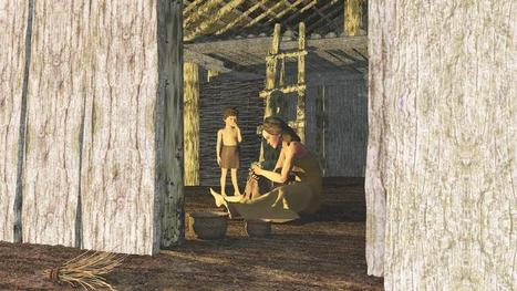 The making of a Neolithic house | Wessex Archaeology | history | Scoop.it
