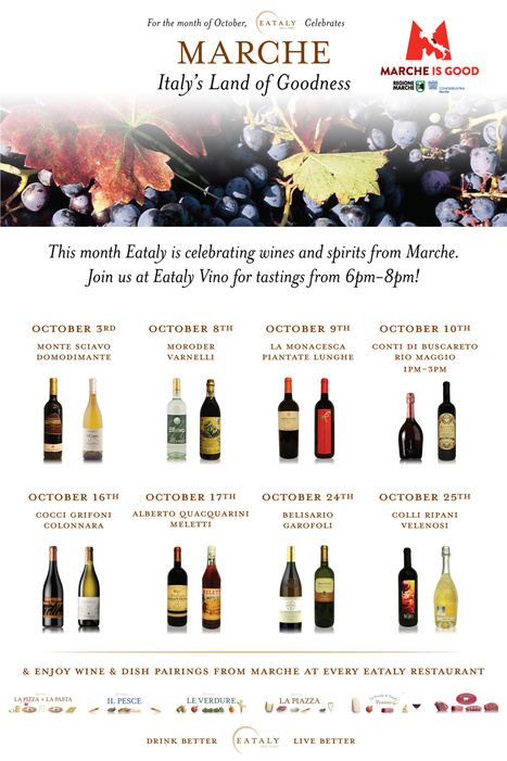 Le Marche's in New York | Month of wines from Le Marche at the Eataly Wine Shop | Eataly | Le Marche - Appassionata Style! | Scoop.it