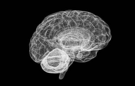 EU makes progress on building computer model of the brain   CLOVER ENTERPRISES ''THE ENTERTAINMENT OF CHOICE''   Scoop.it