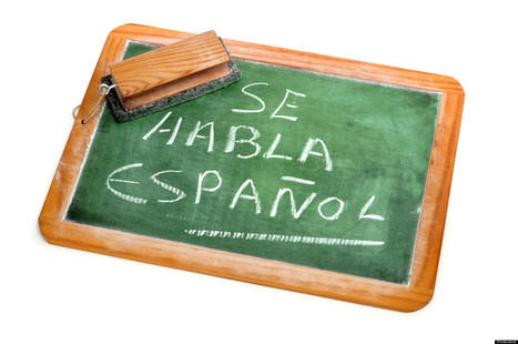 Second Language Immersion Improves Children Academic Success   Foreign Language in Elementary and Middle Schools   Scoop.it