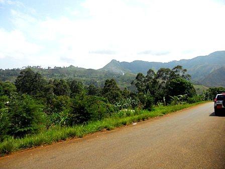 Cameroun > Blog > Autrefois en pays Foulbé | Le Monde sous la plume de Salma | Intervalles | Scoop.it
