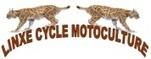 Linxe Cycle - location de vélo et de cycles dans les landes | Gite et Landes | Scoop.it