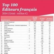 Top 100 des éditeurs de logiciels français : Le SaaS a représenté 12% du CA en 2014 - Le Monde Informatique | Cloud Computing - SaaS - PaaS - IaaS | Scoop.it