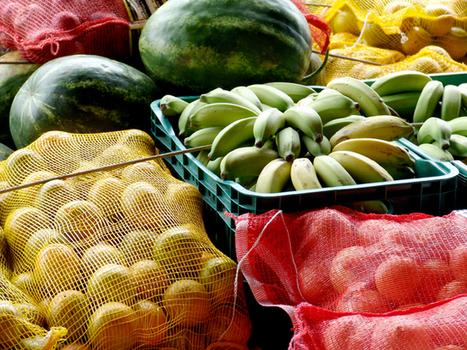 Diez consejos para llevar una vida saludable   RPP NOTICIAS   Alimentación, deporte y salud   Scoop.it