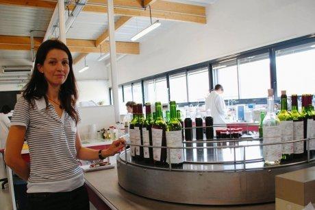 La vendange s'annonce précoce et abondante   vin   Scoop.it
