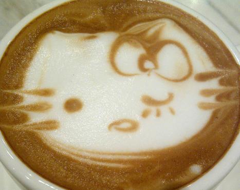 Cameriere, c'è un gatto nel mio cappuccino. | CicerOOs blog | CicerOOs Quid the World | Scoop.it