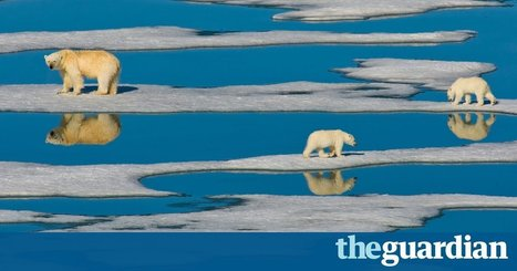 Soaring ocean temperature is 'greatest hidden challenge of our generation' | Environmental issues | Scoop.it