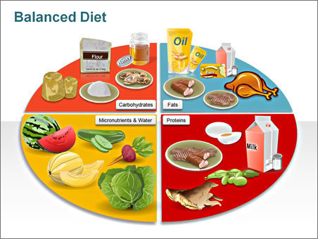 Food Security & Nutrition PowerPoint Presentation   study   Scoop.it