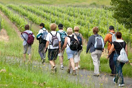 L'oenotourisme, un nouvel atout pour le tourisme français - Le Nouvel Observateur | Le monde rural et touristique | Scoop.it