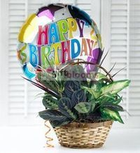 Birthday Balloons| Cheap Balloon Bouquets Delivery USA | Balloon Bouquets Delivery | Scoop.it