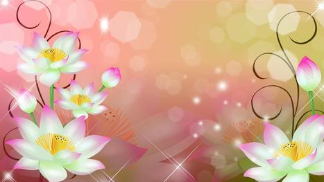 Mangnificent Simple Flowers 4 Download Hd Pictures « Pin HD Wallpapers | Flowers Wallpapers | Scoop.it