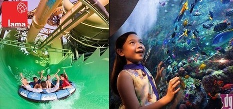 All day at Atlantis for kids & adults with access to the award winning Aquaventure waterpark and The Lost Chambers Aquarium from Lama Tours. Rates starting from AED 280.00 with pick up & drop off w... | Water Park | Scoop.it