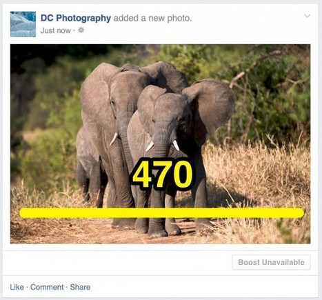 Latest Facebook Photos Size Guide | The Social Media Times | Scoop.it
