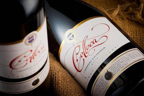 Colloca Estate Wine Label   Innovation Pack   Scoop.it
