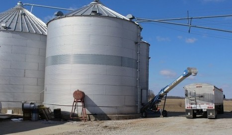 To store or not to store: Considering grain storage in tight economy - Farm and Dairy | Grain du Coteau : News ( corn maize ethanol DDG soybean soymeal wheat livestock beef pigs canadian dollar) | Scoop.it