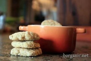 Biscotti per gatti fai-da-te: 10 ricette | Benessere animale | Scoop.it