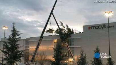 Macy's 60-foot Christmas tree topples off store roof   Christmas Trees and More   Scoop.it
