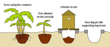 Arbor Loo Composting Toilet for Haiti   North South Tribune   Scoop.it